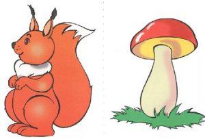 белочка, гриб, белочка и грибочек, занятие в младшей группе