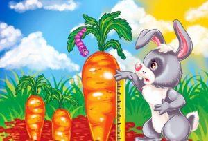 занятие в средней группе, зайчик, зайчик с морковкой