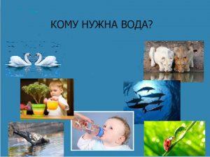 кому нужна вода, занятие в детском саду вода