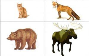 игра кто лишний дикие животные