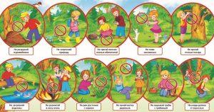 правила поведения в лесу, что нельзя делать в лесу