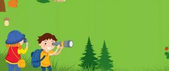 Конспект занятия (лего–конструирование) в младшей группе: «Путешествие в лес»