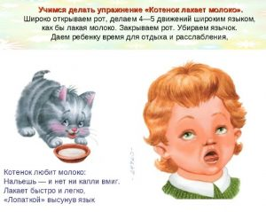 котенок, артикуляционное упражнение котенок
