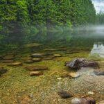 сокровища природы