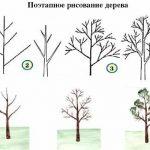 рисование деревьев