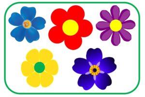 5 цветочков